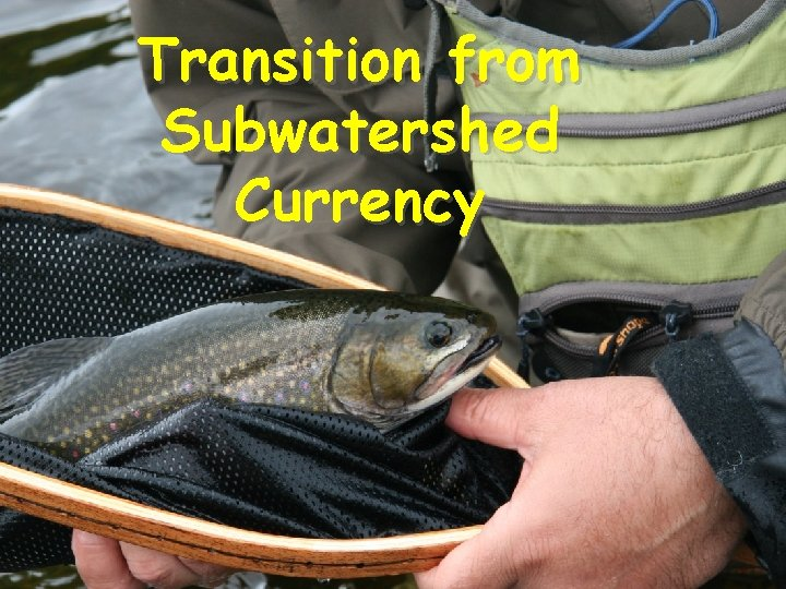Transition from Subwatershed Currency