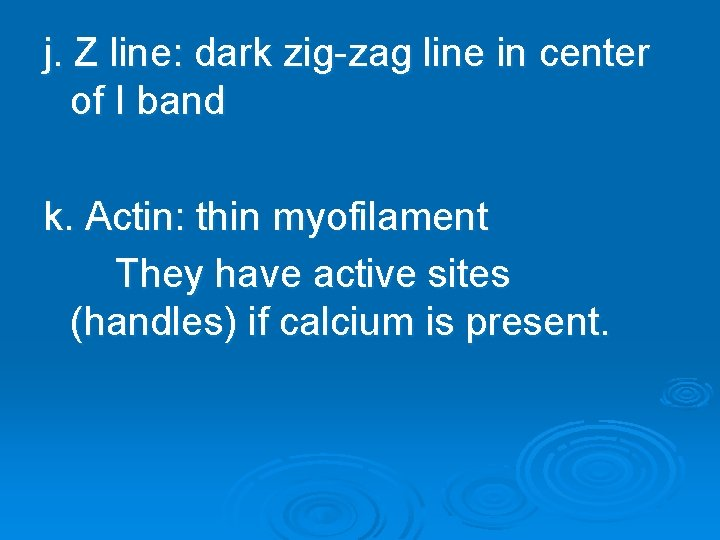 j. Z line: dark zig-zag line in center of I band k. Actin: thin