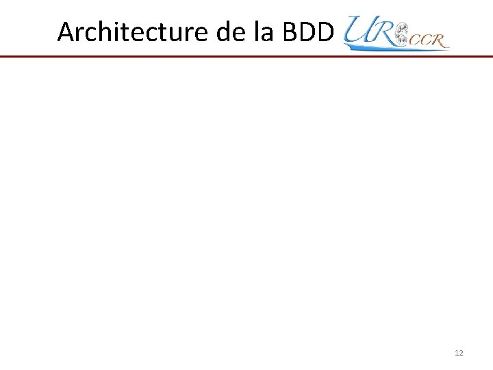 Architecture de la BDD Uro. CCR 12