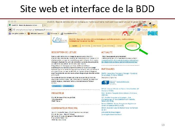 Site web et interface de la BDD 13