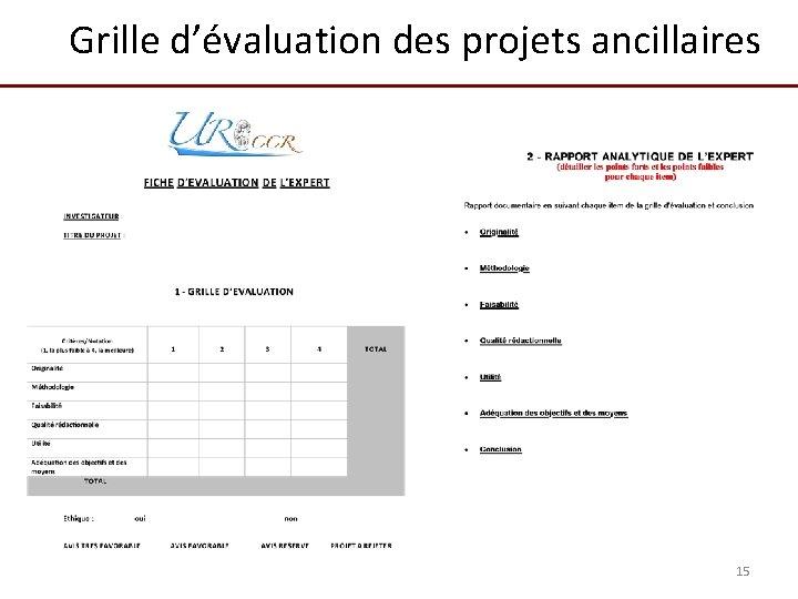 Grille d'évaluation des projets ancillaires 15