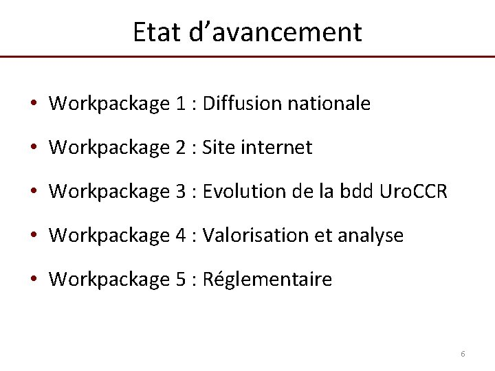 Etat d'avancement • Workpackage 1 : Diffusion nationale • Workpackage 2 : Site internet