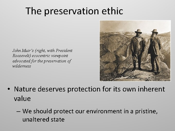 The preservation ethic John Muir's (right, with President Roosevelt) ecocentric viewpoint advocated for the