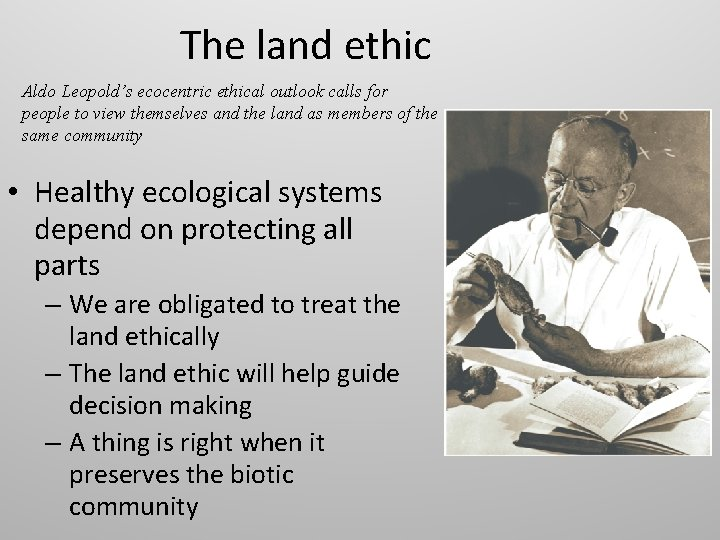 The land ethic Aldo Leopold's ecocentric ethical outlook calls for people to view themselves