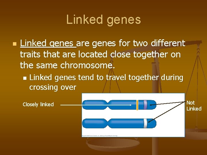 Linked genes n Linked genes are genes for two different traits that are located