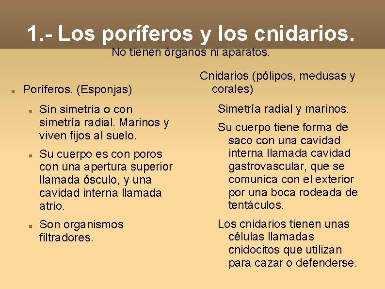 1. - Los poríferos y los cnidarios. No tienen órganos ni aparatos. Poríferos. (Esponjas)