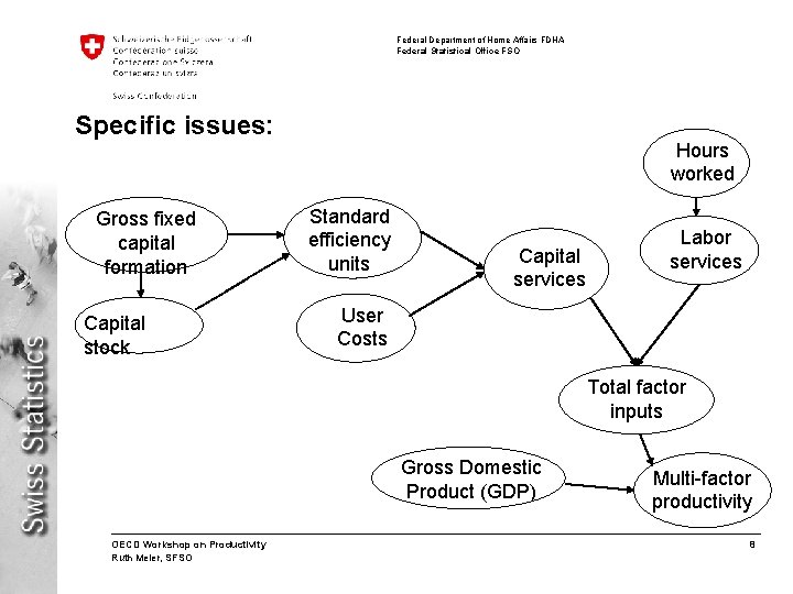 Federal Department of Home Affairs FDHA Federal Statistical Office FSO Specific issues: Gross fixed