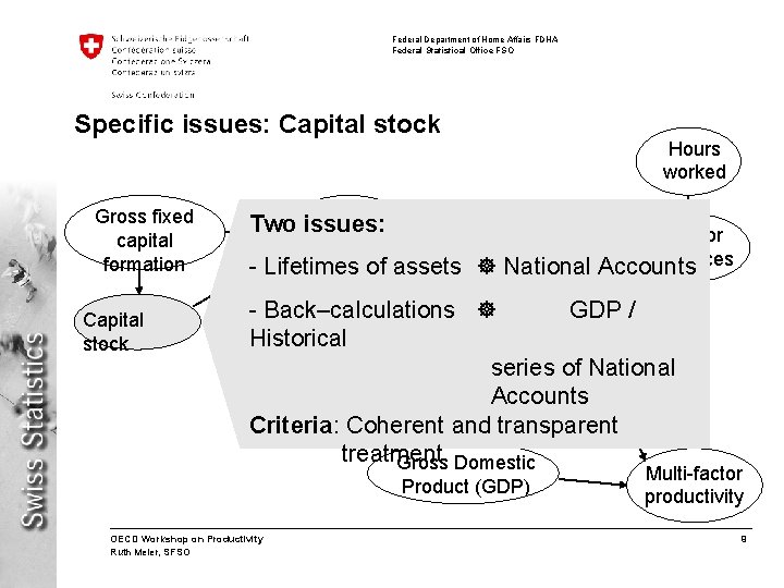 Federal Department of Home Affairs FDHA Federal Statistical Office FSO Specific issues: Capital stock