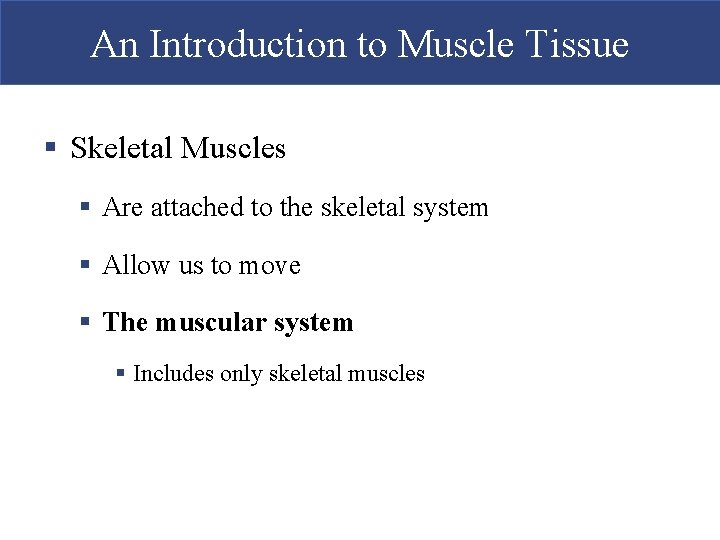 An Introduction to Muscle Tissue § Skeletal Muscles § Are attached to the skeletal
