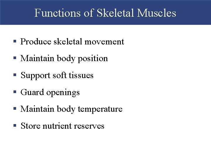 Functions of Skeletal Muscles § Produce skeletal movement § Maintain body position § Support