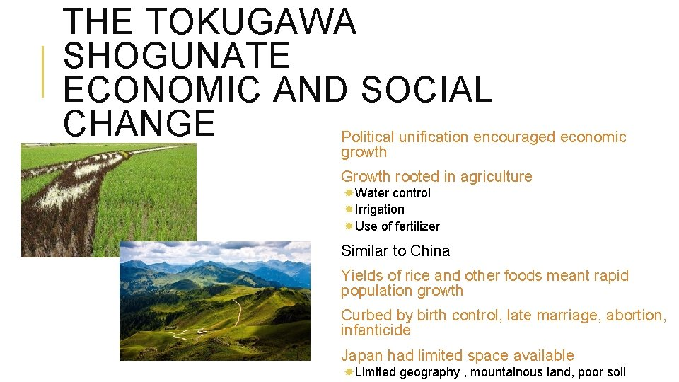 THE TOKUGAWA SHOGUNATE ECONOMIC AND SOCIAL CHANGE Political unification encouraged economic growth Growth rooted