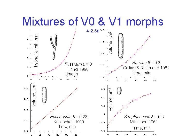 volume, m 3 4. 2. 3 a Bacillus = 0. 2 Collins & Richmond