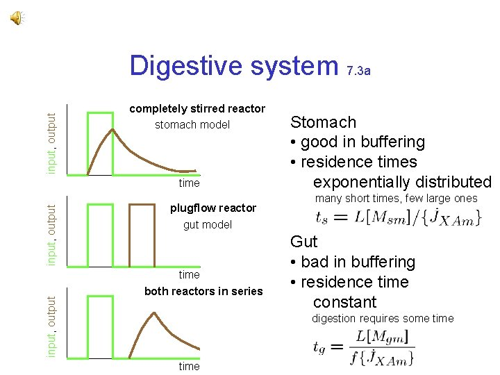 input, output Digestive system 7. 3 a completely stirred reactor stomach model input, output
