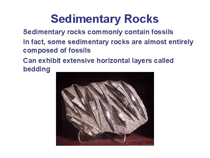 Sedimentary Rocks Sedimentary rocks commonly contain fossils In fact, some sedimentary rocks are almost