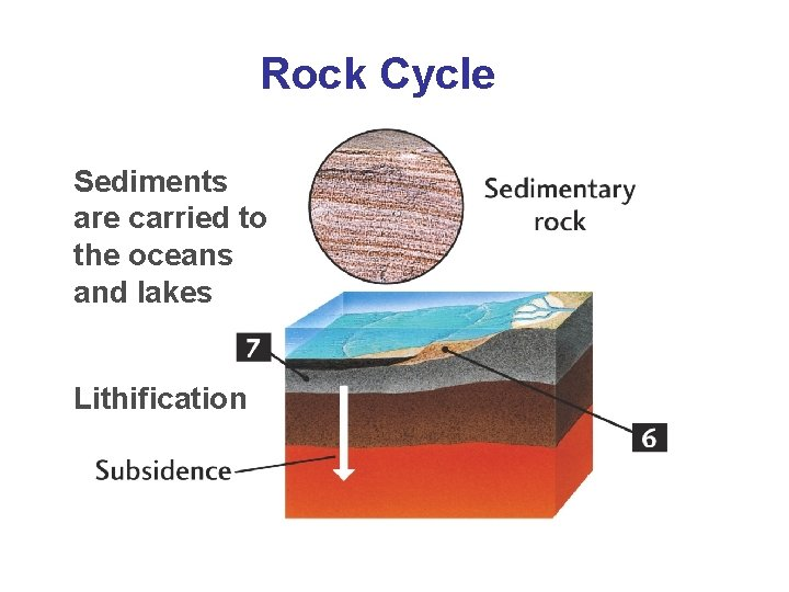 Rock Cycle Sediments are carried to the oceans and lakes Lithification
