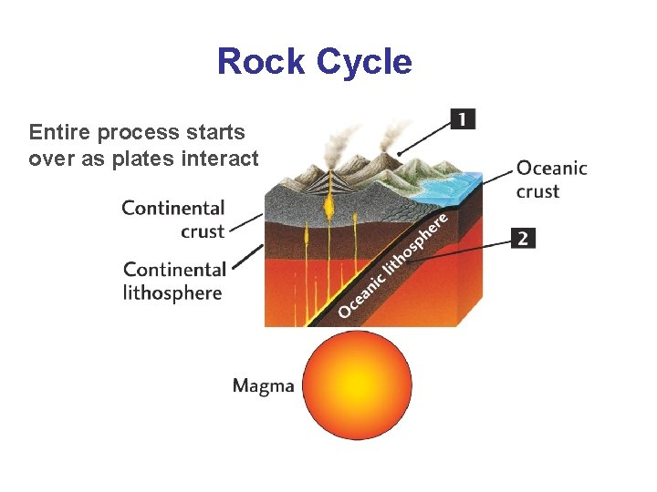 Rock Cycle Entire process starts over as plates interact