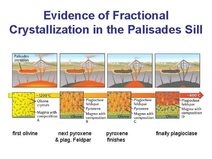Evidence of Fractional Crystallization in the Palisades Sill first olivine next pyroxene & plag.