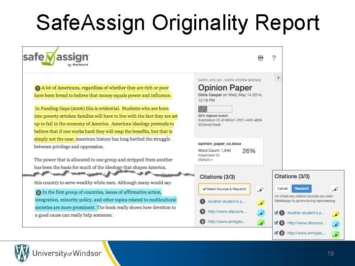 Safe. Assign Originality Report 19