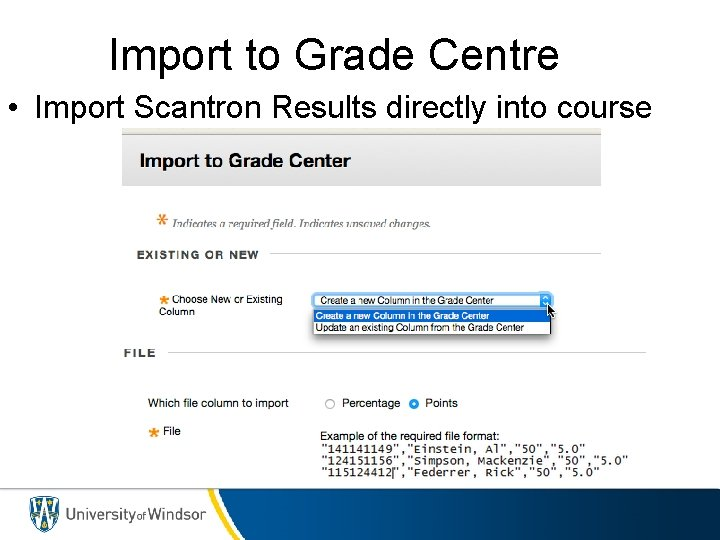 Import to Grade Centre • Import Scantron Results directly into course