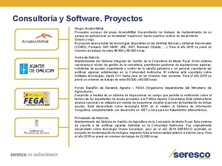 Consultoría y Software. Proyectos Grupo Arcelor. Mittal. Proveedor europeo del grupo Arcelor. Mittal. Desarrollando