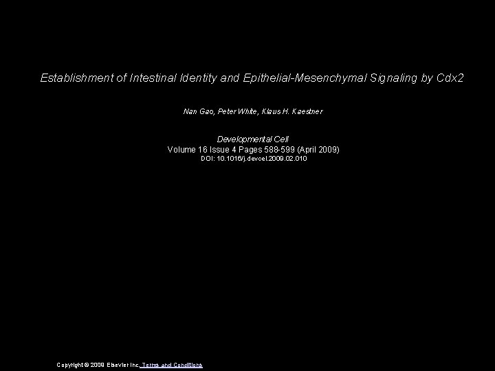 Establishment of Intestinal Identity and Epithelial-Mesenchymal Signaling by Cdx 2 Nan Gao, Peter White,