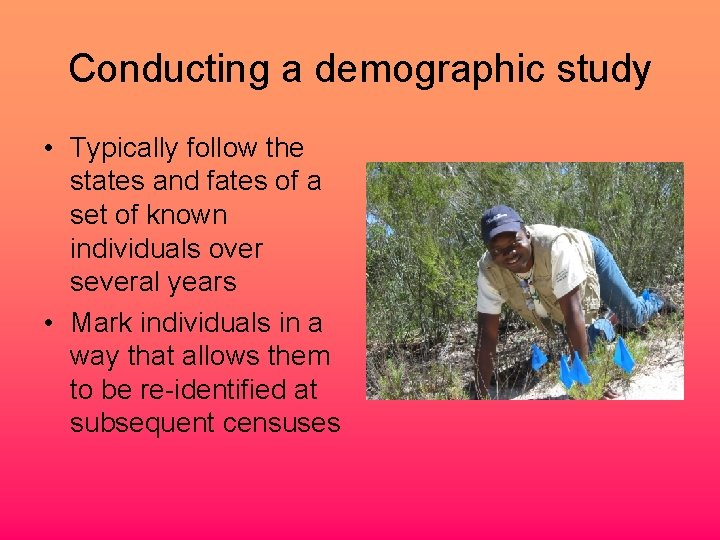 Conducting a demographic study • Typically follow the states and fates of a set