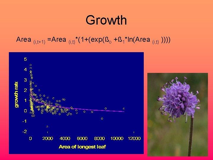 Growth Area (i, t+1) =Area (i, t)*(1+(exp(ßo +ß 1*ln(Area (i, t) ))))