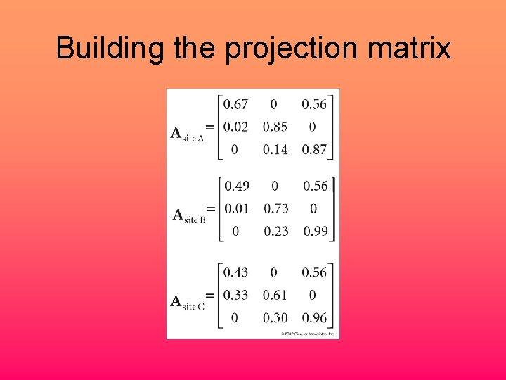 Building the projection matrix