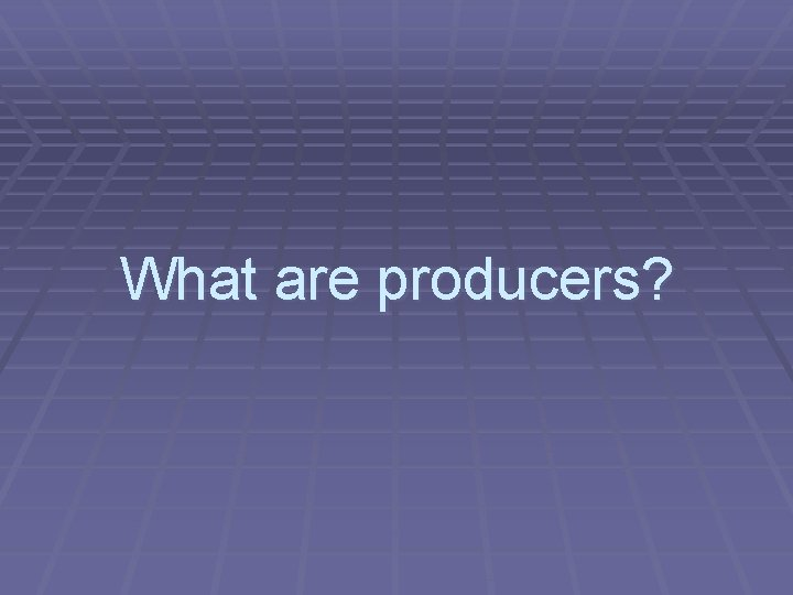 What are producers?