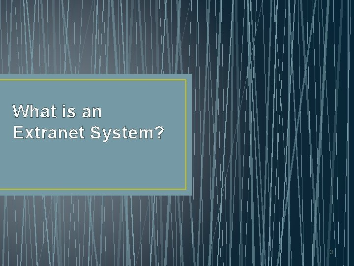 What is an Extranet System? 3