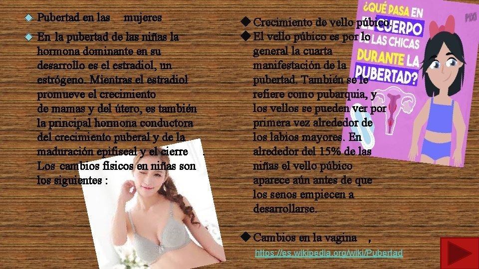 Pubertad en las mujeres En la pubertad de las niñas la hormona dominante