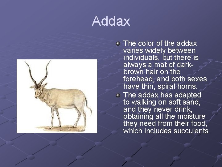Addax The color of the addax varies widely between individuals, but there is always
