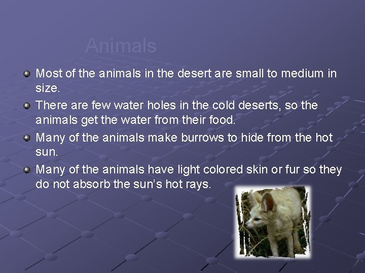 Animals Most of the animals in the desert are small to medium in size.