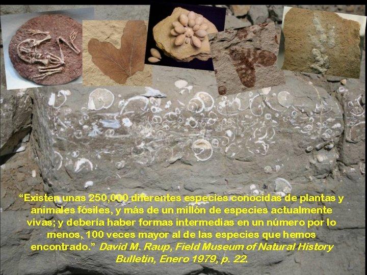 """""""Existen unas 250, 000 diferentes especies conocidas de plantas y animales fósiles, y más"""