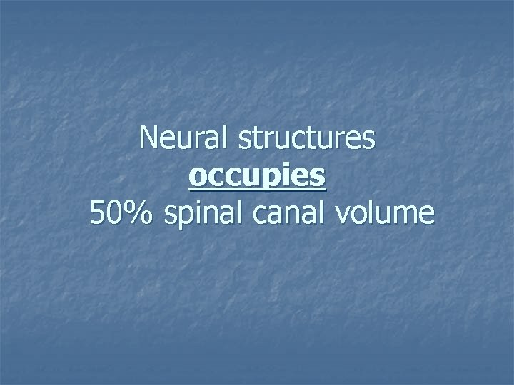 Neural structures occupies 50% spinal canal volume
