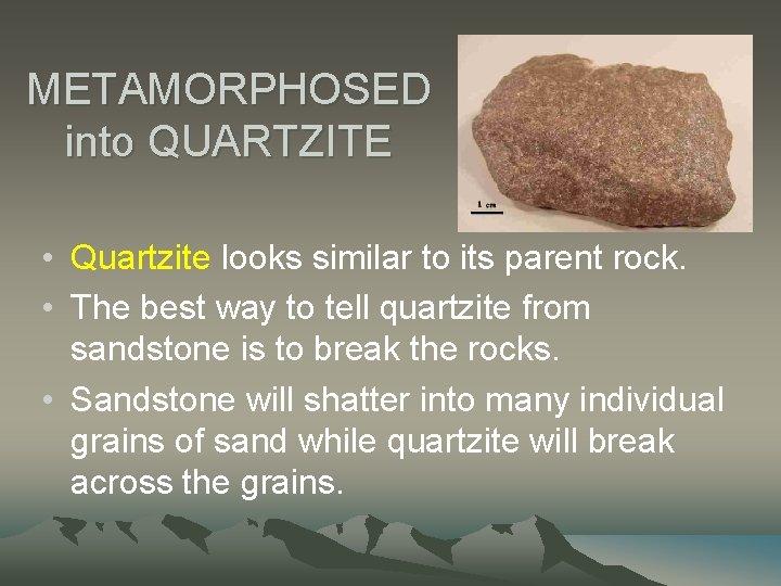METAMORPHOSED into QUARTZITE • Quartzite looks similar to its parent rock. • The best