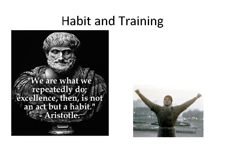 Habit and Training