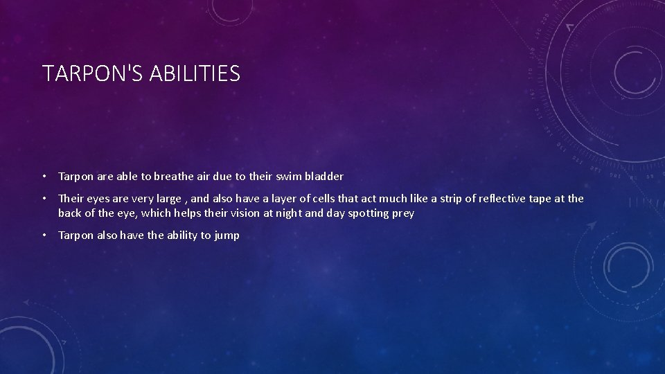 TARPON'S ABILITIES • Tarpon are able to breathe air due to their swim bladder