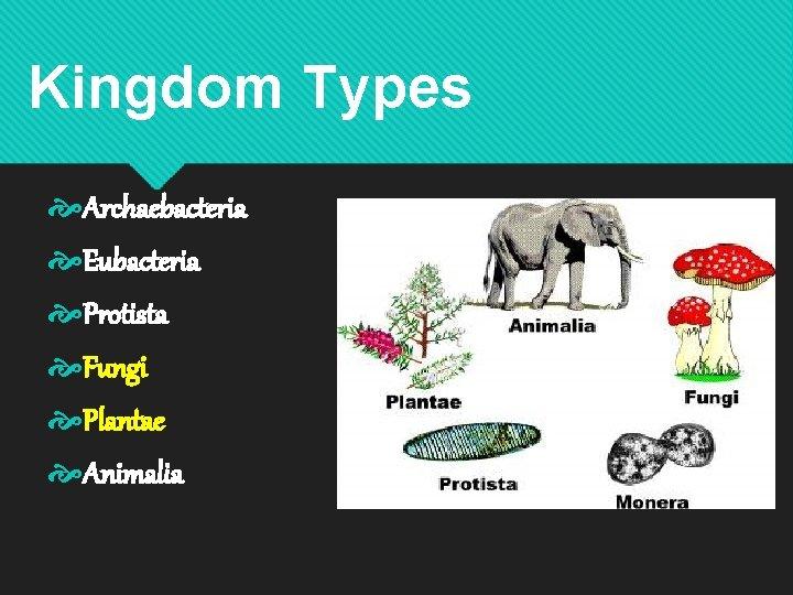 Kingdom Types Archaebacteria Eubacteria Protista Fungi Plantae Animalia