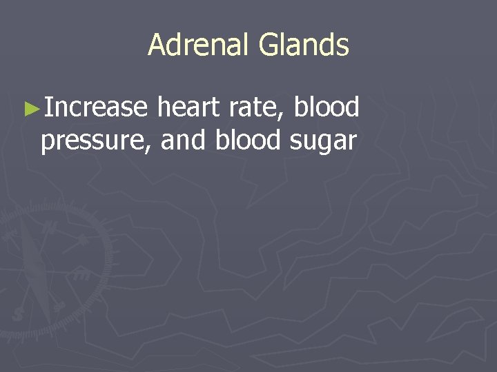 Adrenal Glands ►Increase heart rate, blood pressure, and blood sugar
