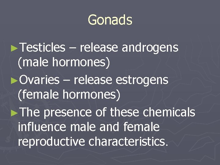 Gonads ►Testicles – release androgens (male hormones) ►Ovaries – release estrogens (female hormones) ►The