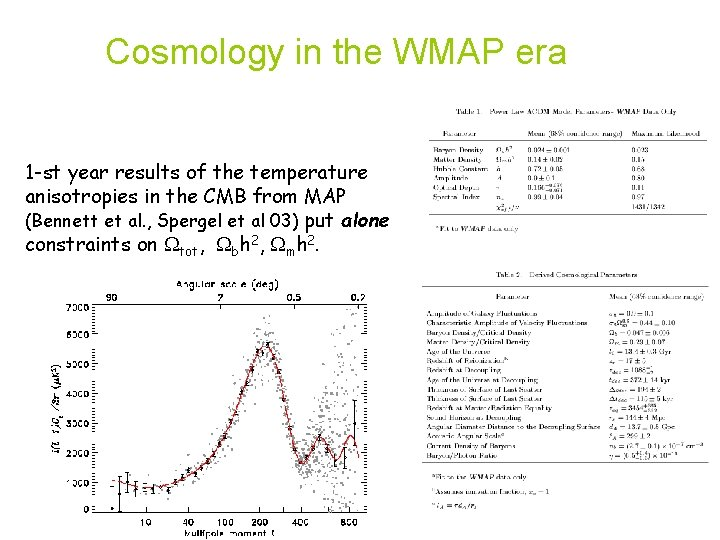 Cosmology in the WMAP era 1 -st year results of the temperature anisotropies in