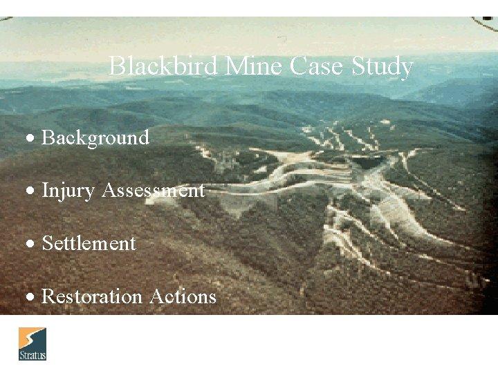Blackbird Mine Case Study Background Injury Assessment Settlement Restoration Actions