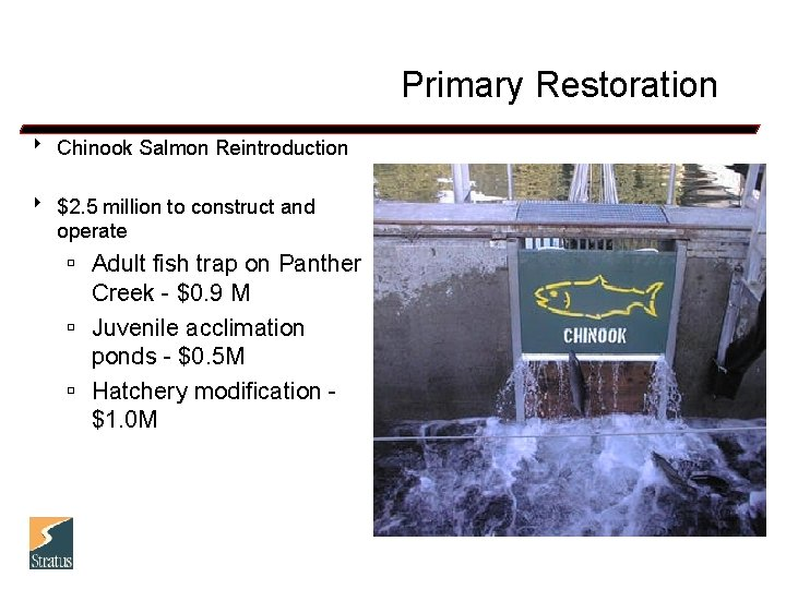 Primary Restoration 8 Chinook Salmon Reintroduction 8 $2. 5 million to construct and operate