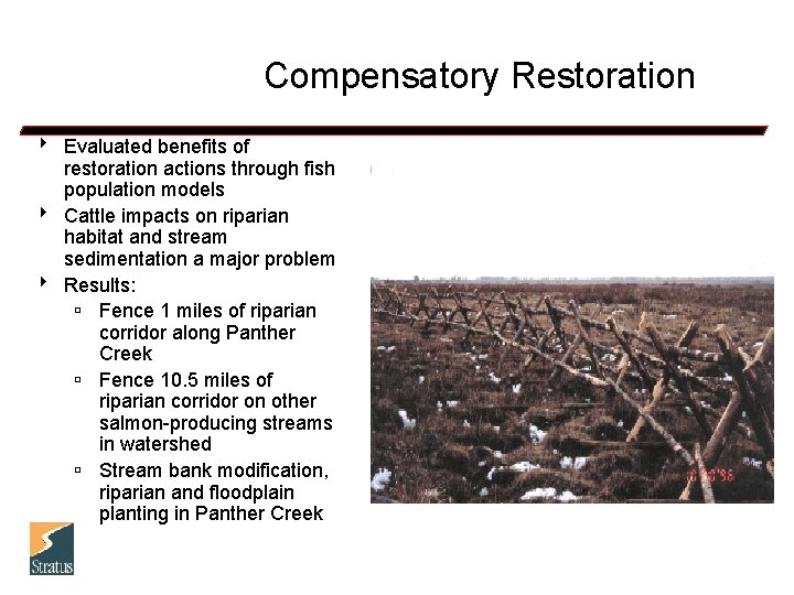 Compensatory Restoration 8 Evaluated benefits of restoration actions through fish population models 8 Cattle