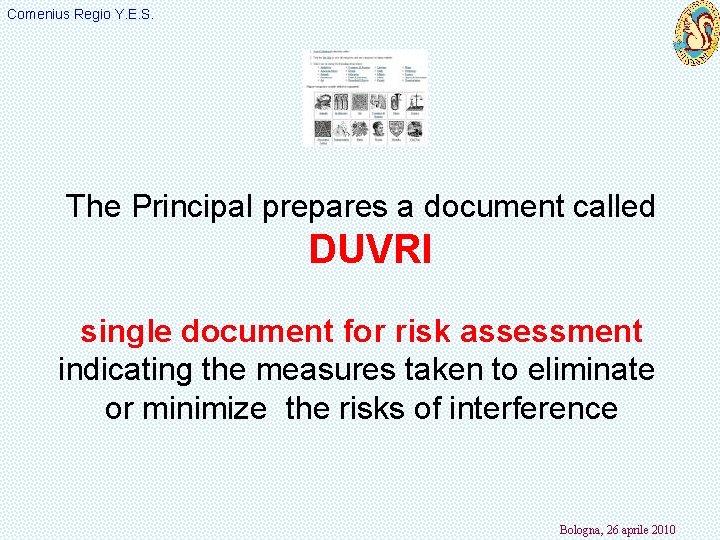 Comenius Regio Y. E. S. The Principal prepares a document called DUVRI single document