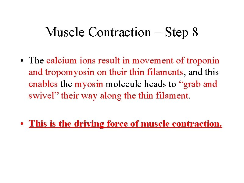 Muscle Contraction – Step 8 • The calcium ions result in movement of troponin