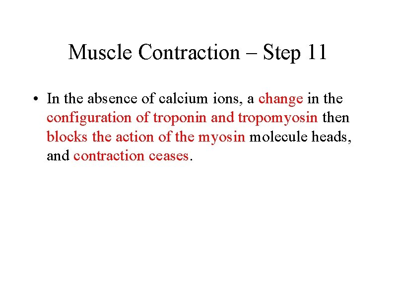 Muscle Contraction – Step 11 • In the absence of calcium ions, a change