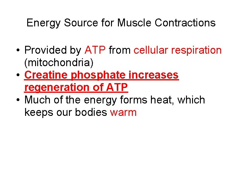 Energy Source for Muscle Contractions • Provided by ATP from cellular respiration (mitochondria) •