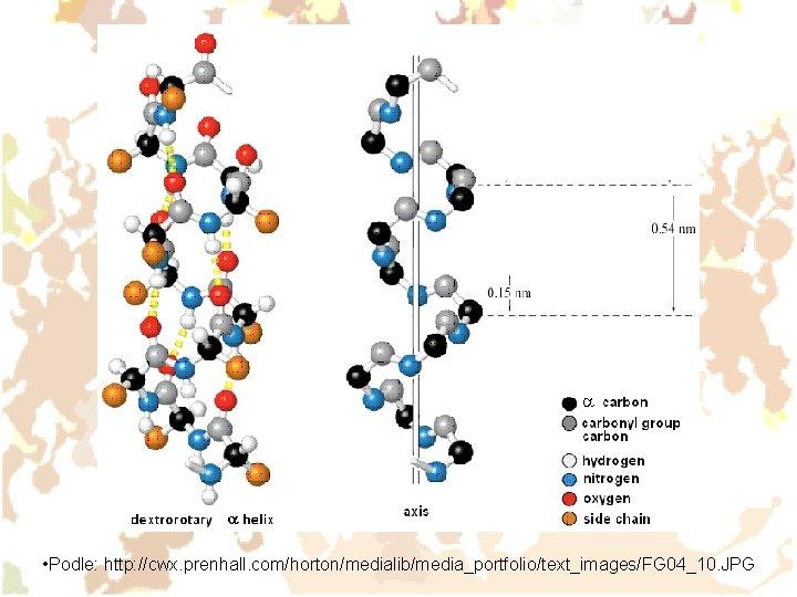 • Podle: http: //cwx. prenhall. com/horton/medialib/media_portfolio/text_images/FG 04_10. JPG